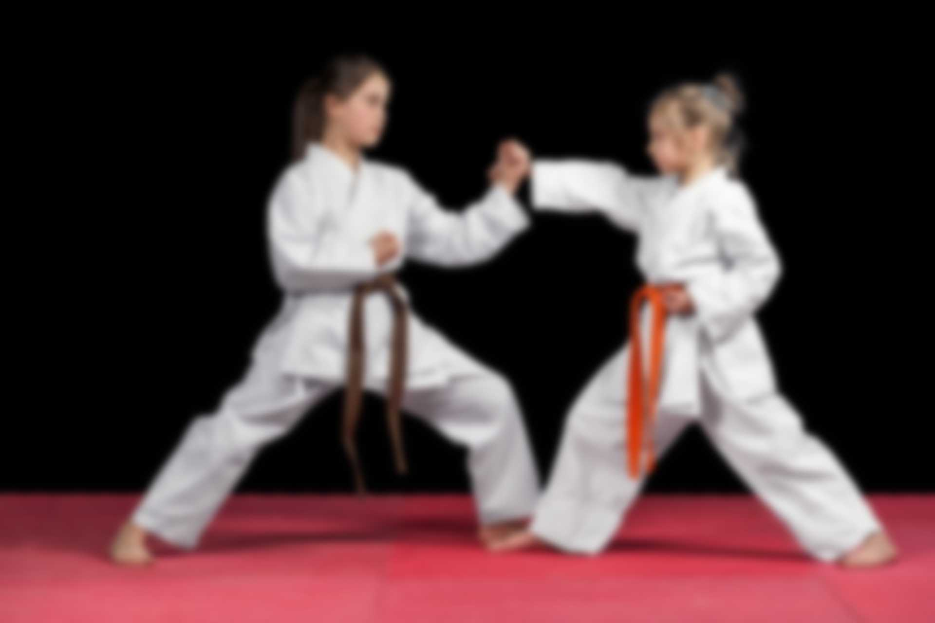 //usa-martial-arts.com/wp-content/uploads/2018/02/img_11.jpg