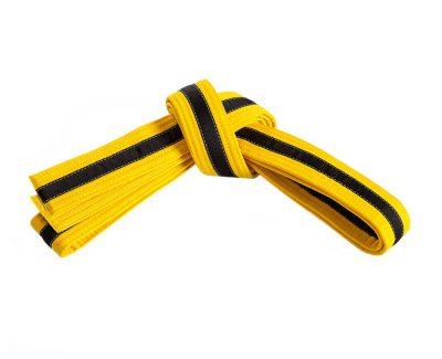 Belt, Yellow, Black Stripe